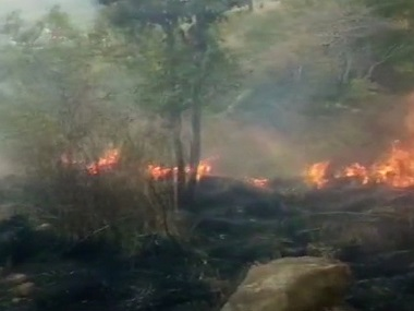 Theni fire: 37 trekkers trapped in Tamil Nadu's Kurangani forest, 15 rescued so far; IAF helicopters begin rescue efforts