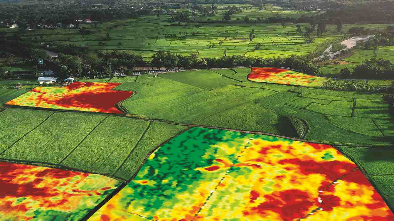 Farmers are now accessing advanced satellites to provide near-live images of fields and crop damage. Image Credit: RHIZA/Em7