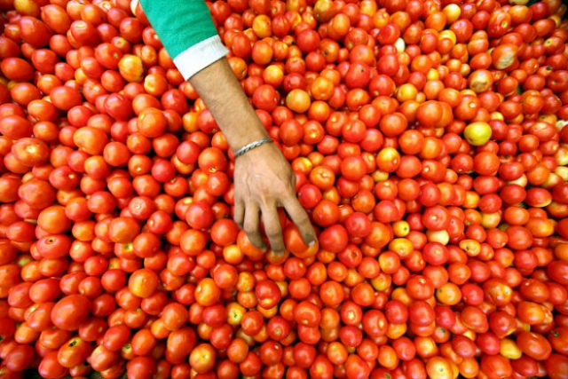 400% rise in tomato, 60% price ris